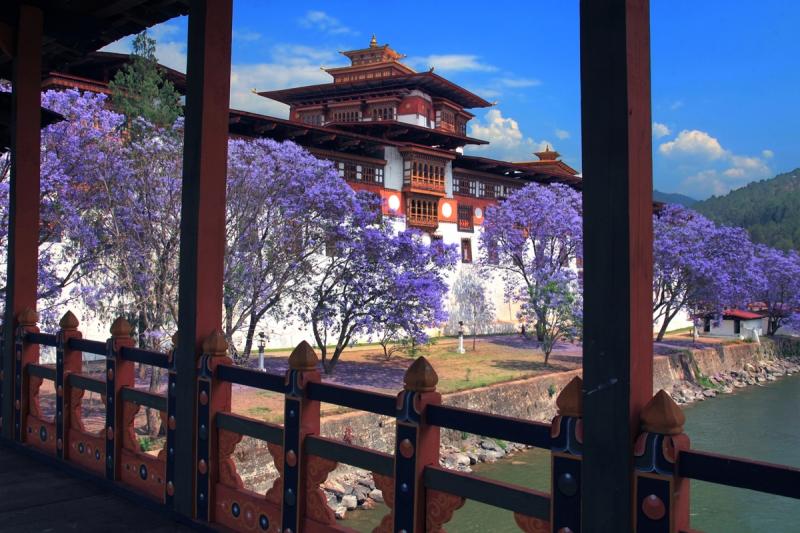 Bhutan Honeymoon destination Image 8
