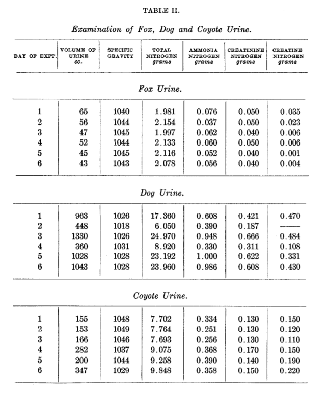 A comparison table showing urinalysis results of a study done in 1910.  Compiles dog, fox and coyote urine analysis.