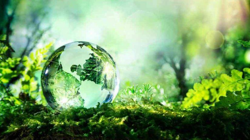http://centrefordevelopmentgreatlakes.org/wp-content/uploads/2019/10/cropped-ecologie-solutions-825x510.jpg