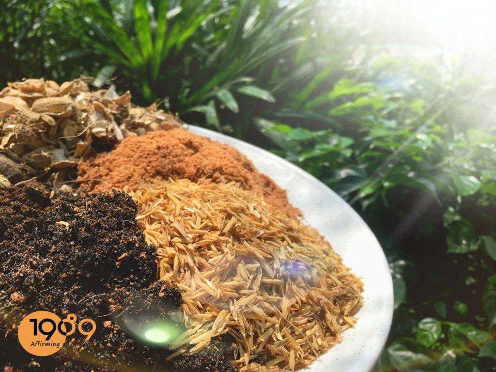 Các loại Giá thể, Phân bón trồng cây