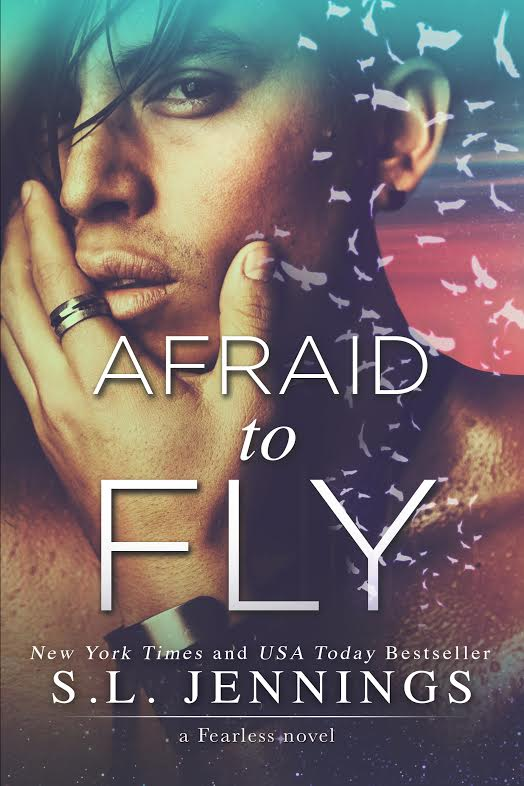 afraid to fly cover.jpg