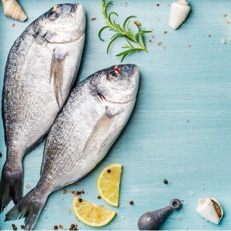 C:Usersmlemai01AppDataLocalMicrosoftWindowsINetCacheContent.Wordfresh-raw-sea-bream-fish-decorated-with-lemon-slices-herbs-and-shells-picture-id669533432.jpg
