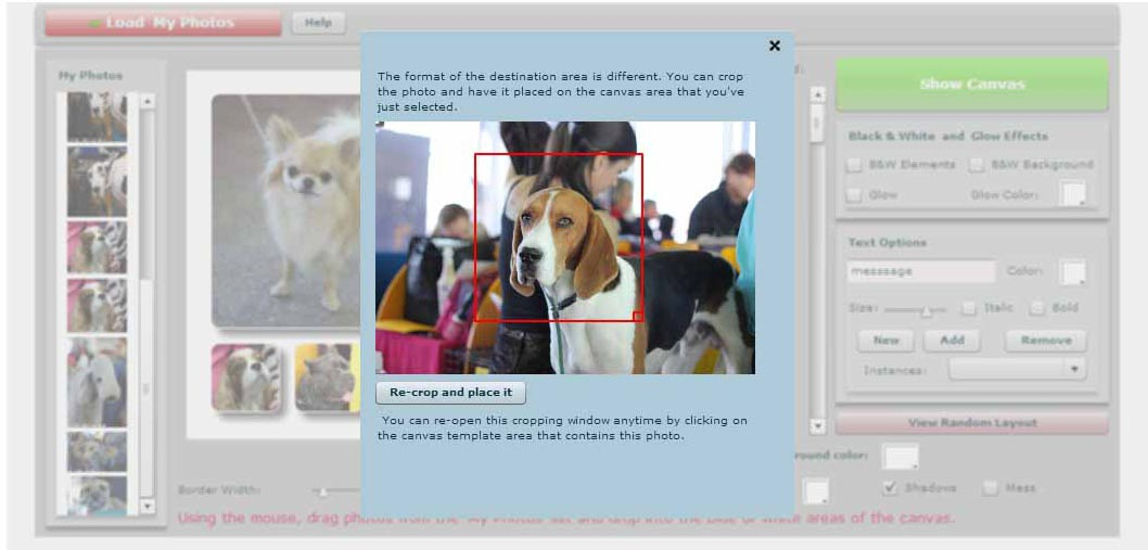 Apc collage 2.jpg