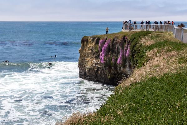 Top 5 Spots to Watch Surfers in Santa Cruz County - Visit Santa ...