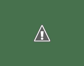 Военный союз Швеции и Финляндии