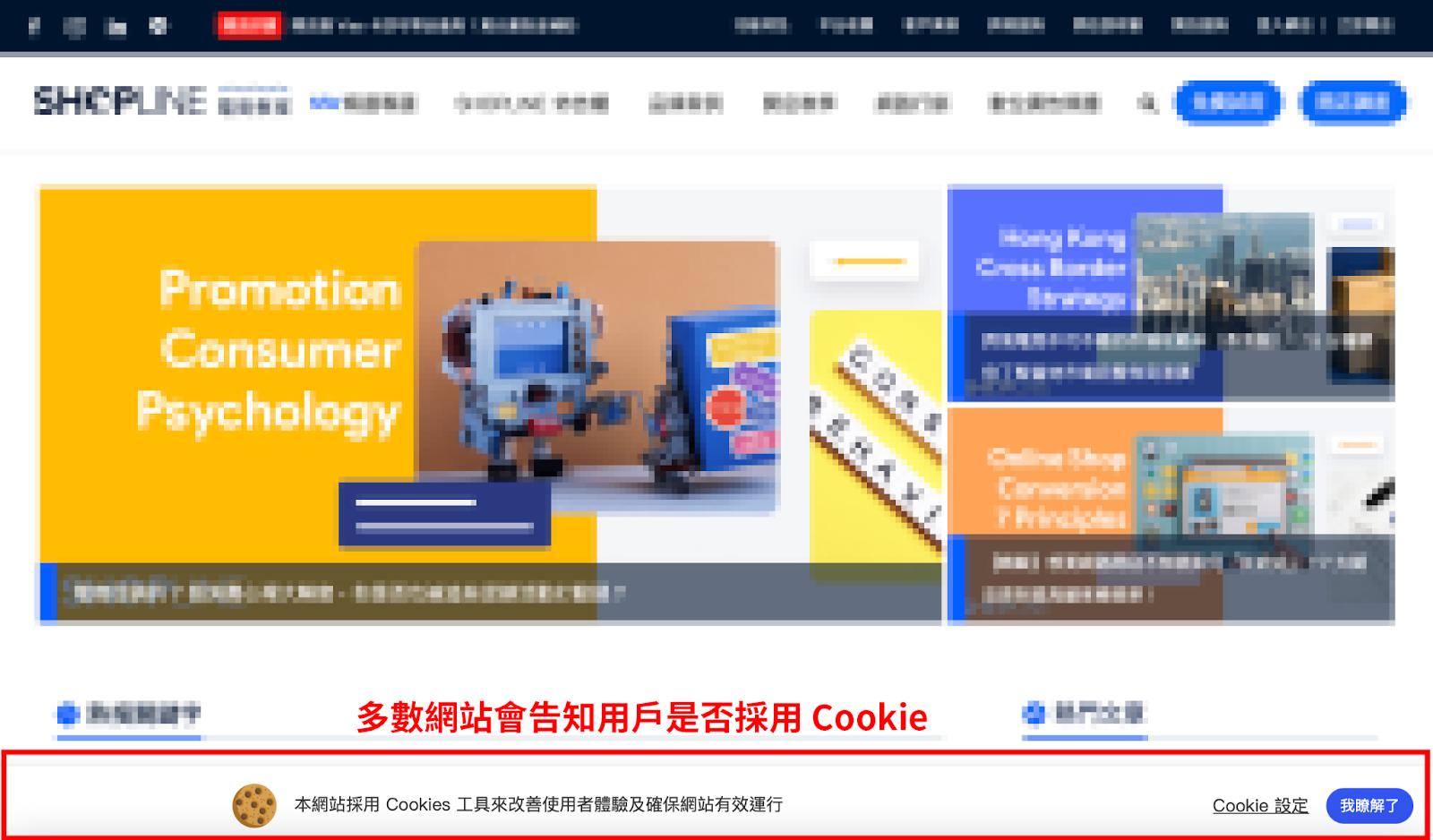 多數網站因為 GDPR 的原因而加入詢問用戶是否接受 Cookie 的訊息