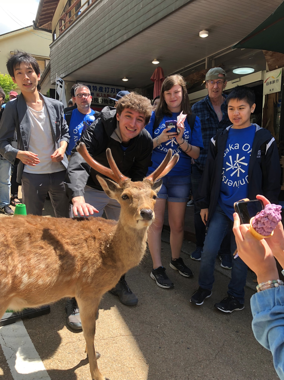Moravian students and Japanese students pose with a wild deer in the street