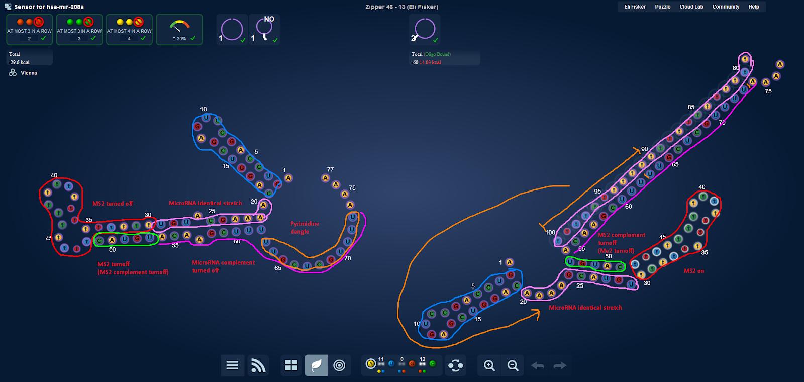 MicroRNA turnon blueprintpng