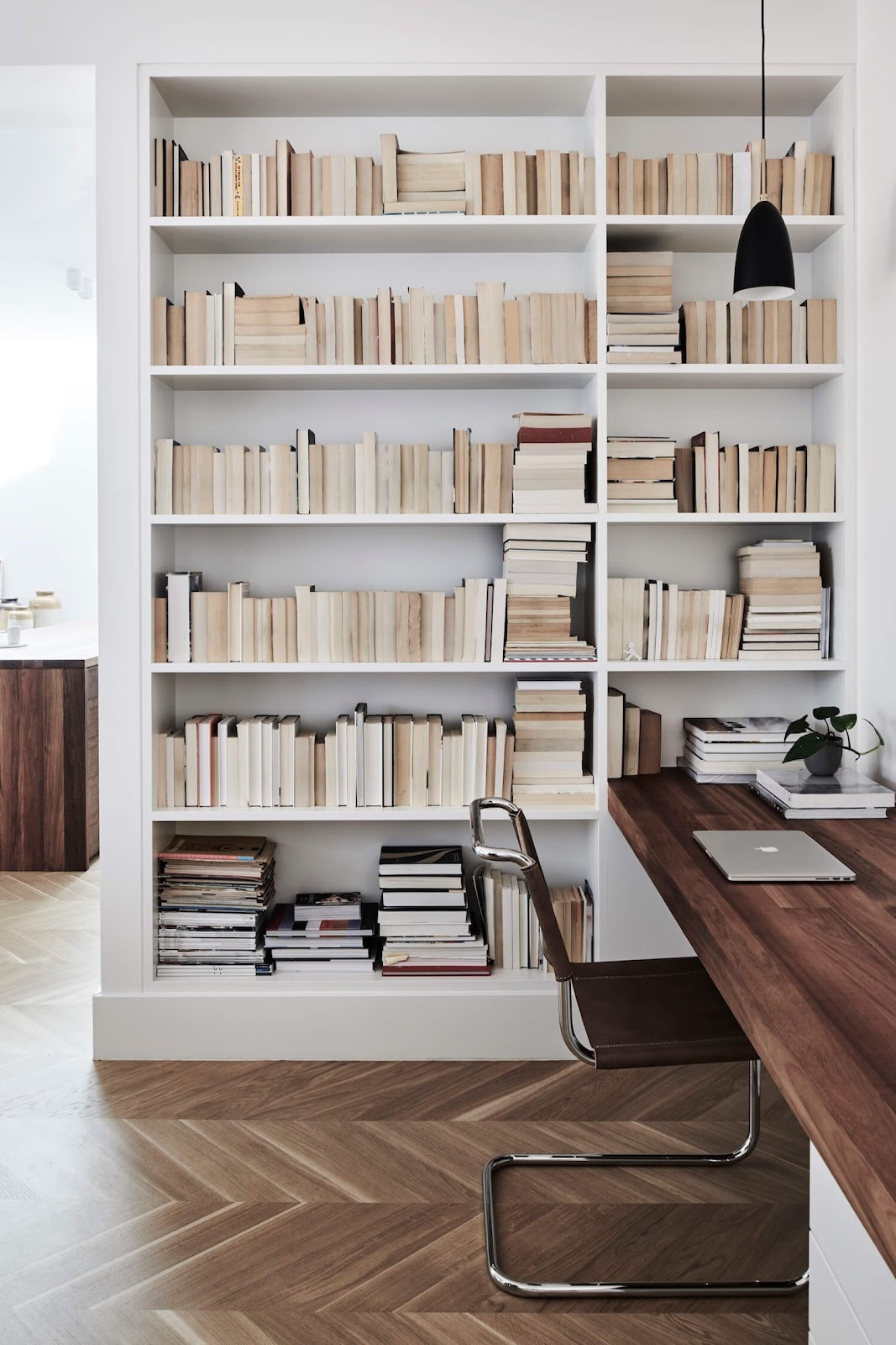 Bookcases in the office