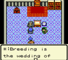 Dragon Warrior Monsters - Game Boy RPGs - Breeding a wedding screenshot