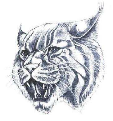 http://www.elginisd.net/2K5/sped/imgs/Wildcat-Mascot.jpg