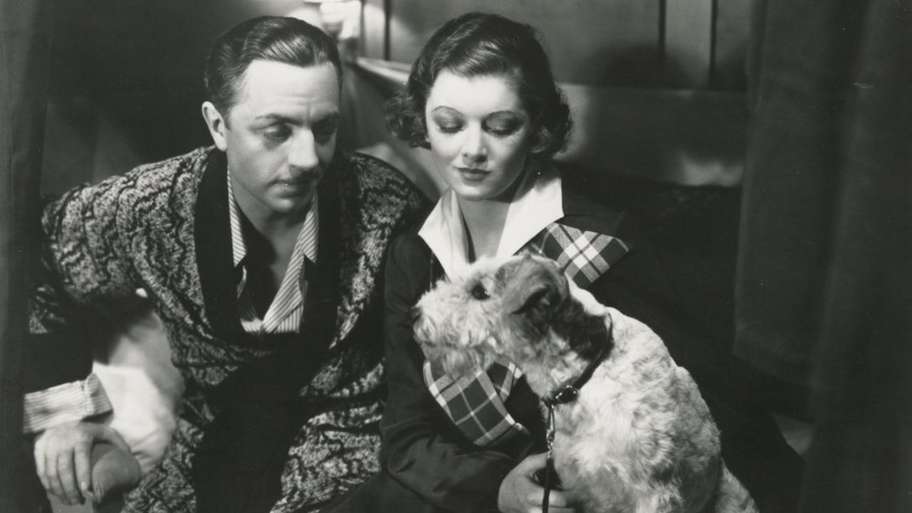 Image result for the thin man dog