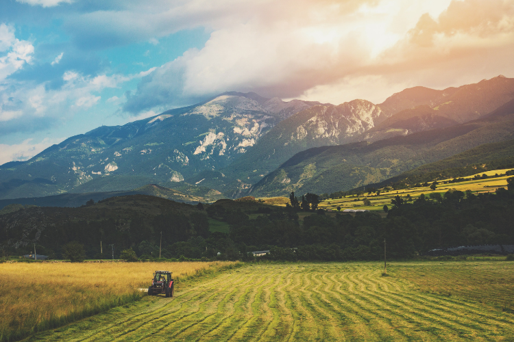 Farmland is a recession-proof investment
