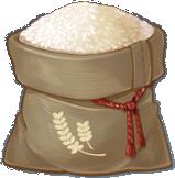 Gạo - Rice
