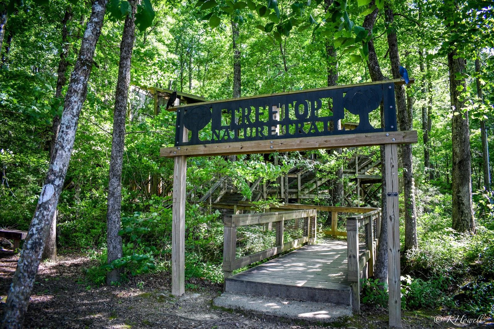Treetop Nature Trail at Oak Mountain State Park in Pelham, AL