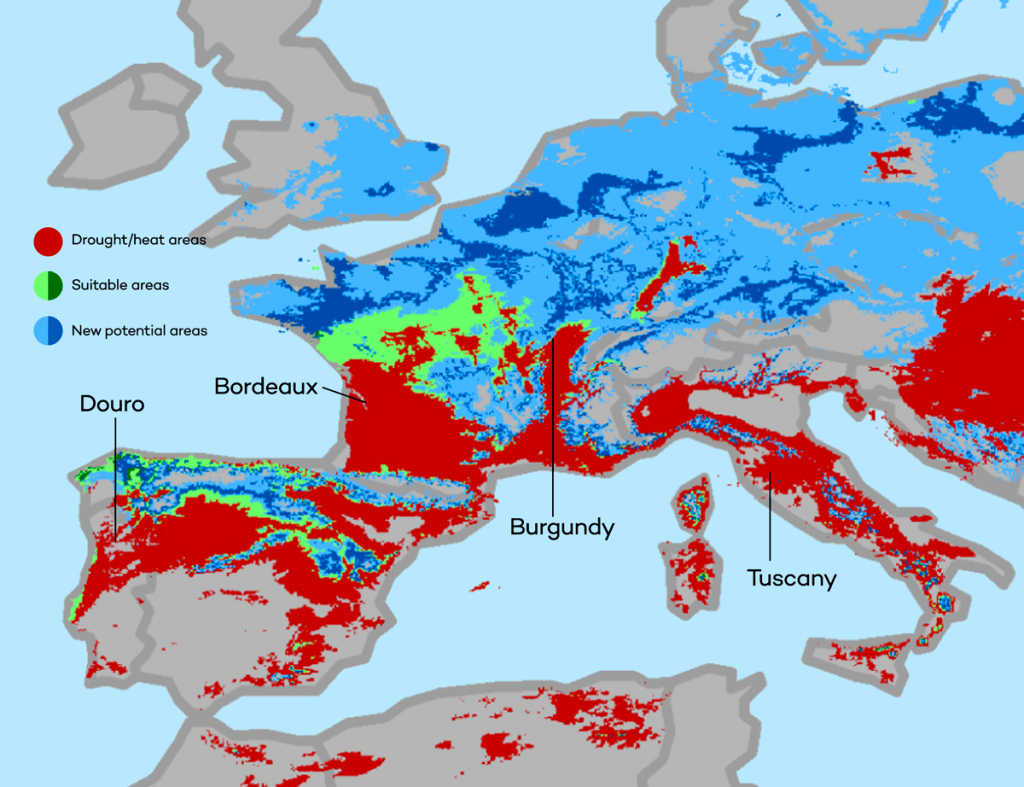 climate-change-wine-western-europe