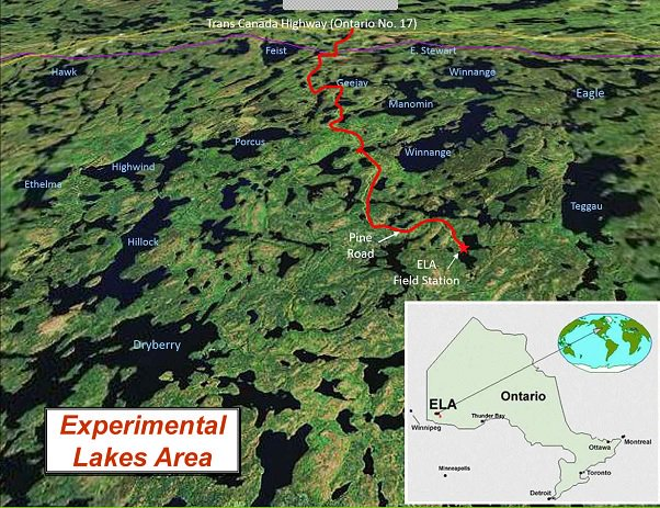 Experimental Lakes Area in Canada - Scientists studied the effects of a portion of a lake loaded with phosphorus, compared to a side of a lake without the element added.