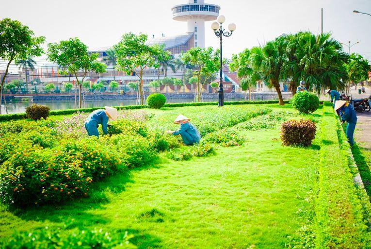 Dịch vụ chăm sóc cây xanh tại Bình Dương | DT 090 24 24 100
