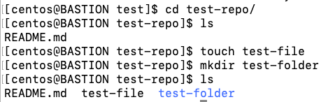 Add new files/folders on a cloned repository