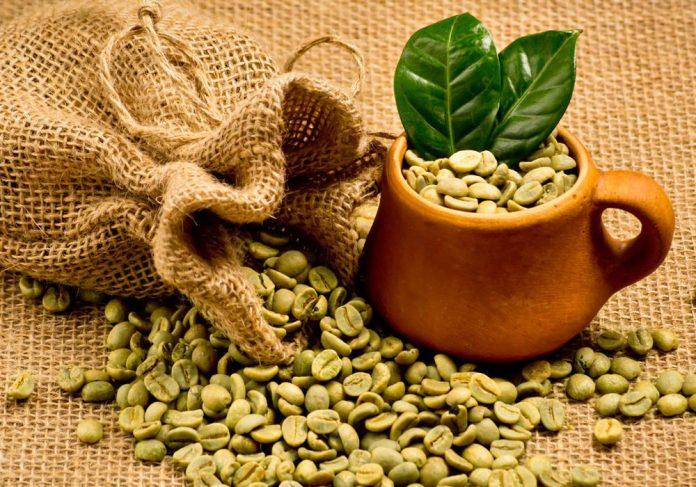 Cà phê xanh chứa nhiều hoạt chất chống oxy hóa giúp chị em nhanh chóng lấy lại vóc dáng ban đầu