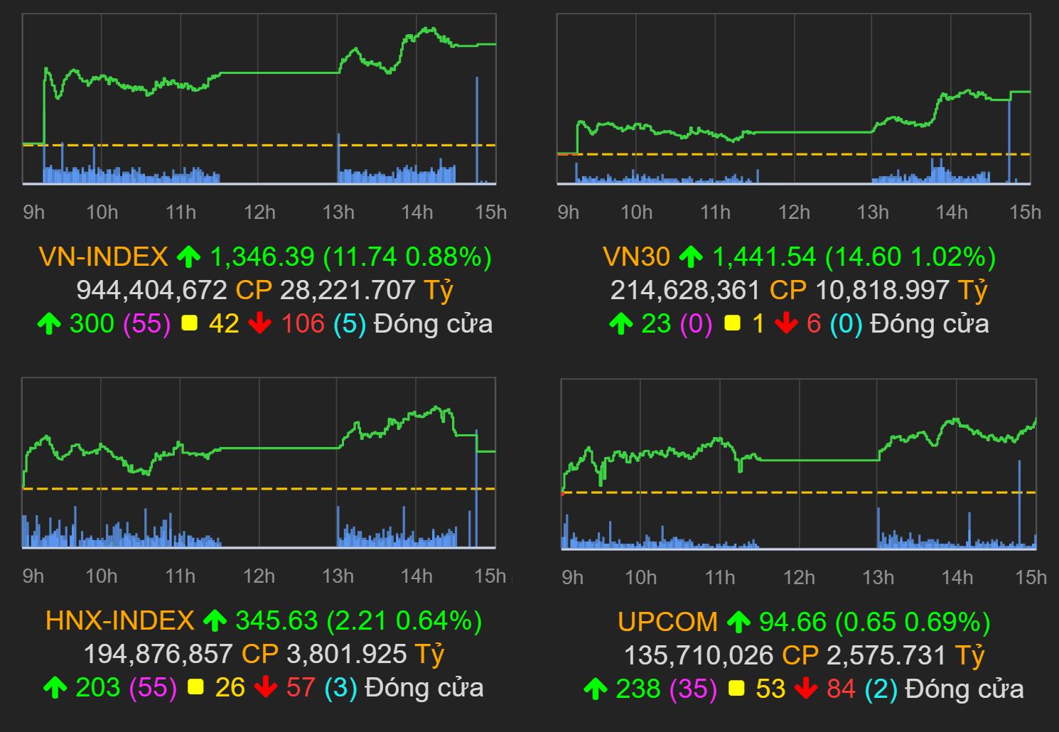 Thị trường chứng khoán (6/9): VN-Index tăng gần 12 điểm với thanh khoản tăng mạnh - Ảnh 1.
