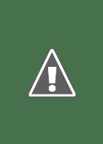 Watch The Deep Online Free in HD