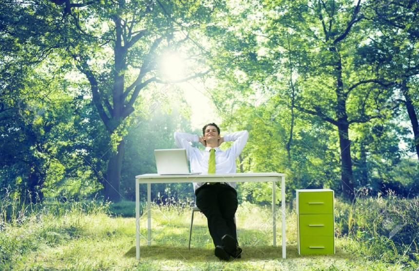 Màu xanh rêu giúp giải tỏa căng thẳng