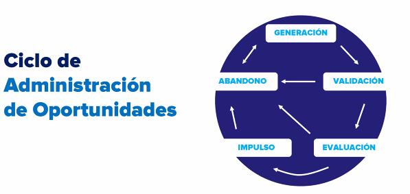 El Ciclo de Administración de Oportunidades.