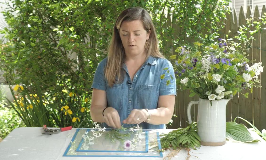Arrange your plants