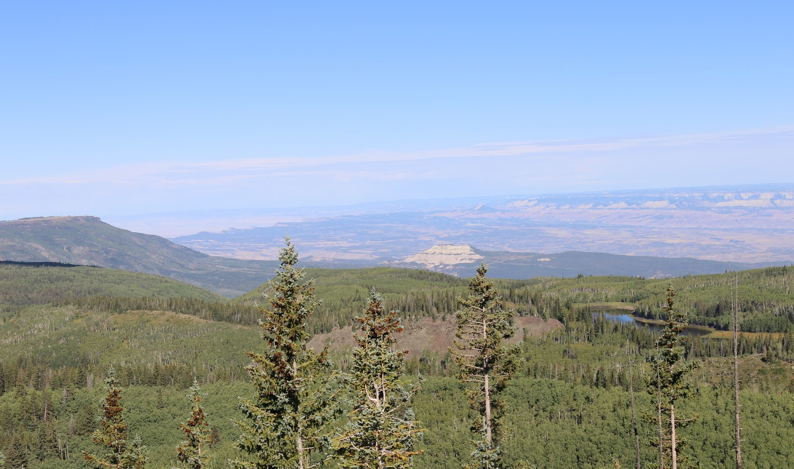 Bicycle ride Grand Mesa North - forest, sky, mesas, chalk mountain