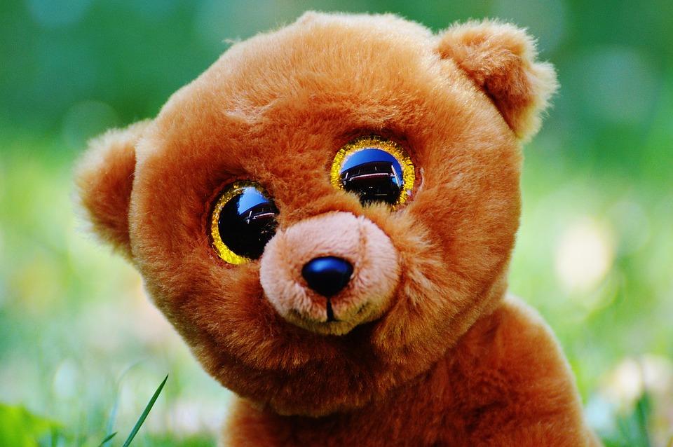 http://maxpixel.freegreatpicture.com/static/photo/1x/Stuffed-Animal-Soft-Toy-Teddy-Bear-Glitter-Eyes-861055.jpg