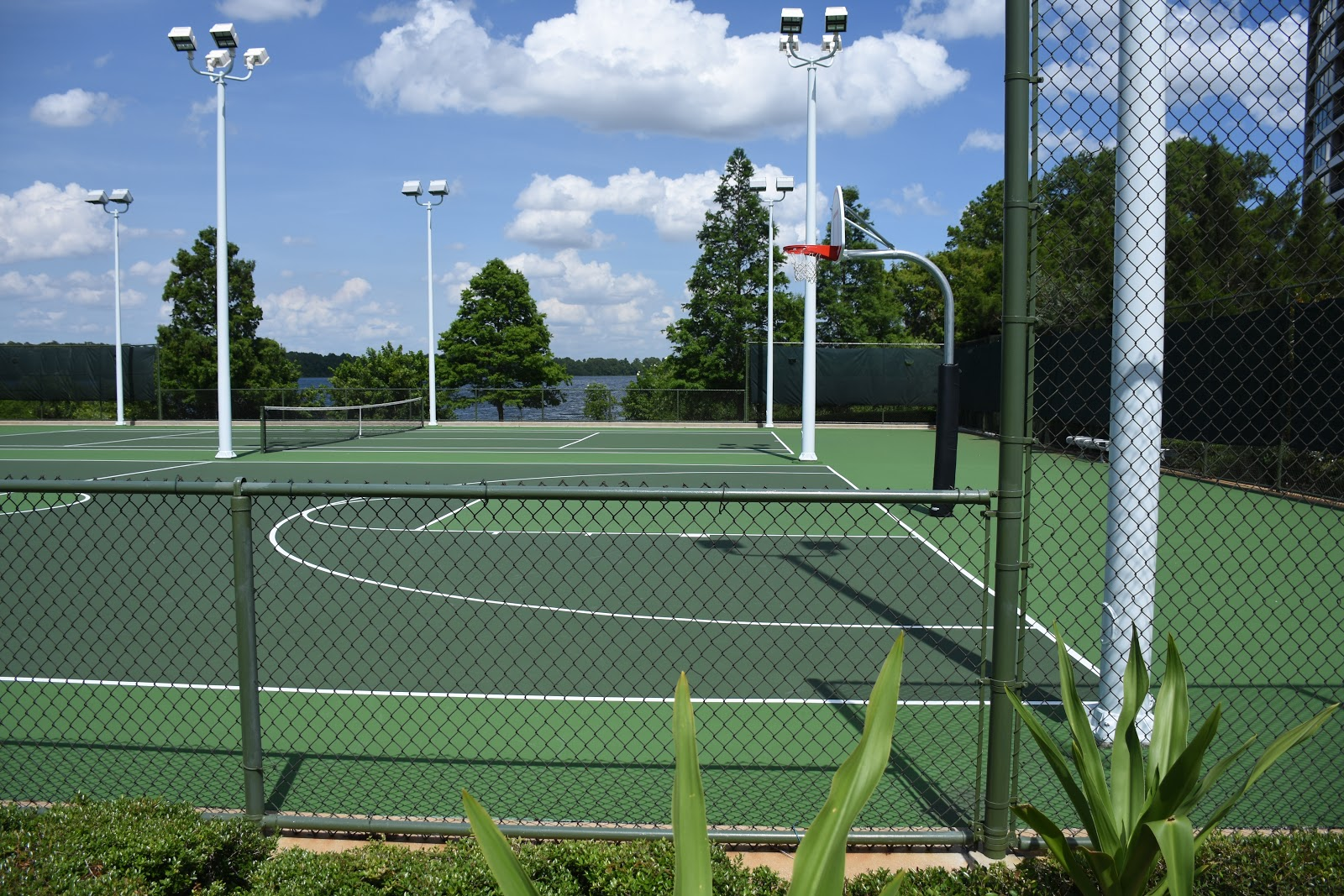 Bay Lake Tennis Courts
