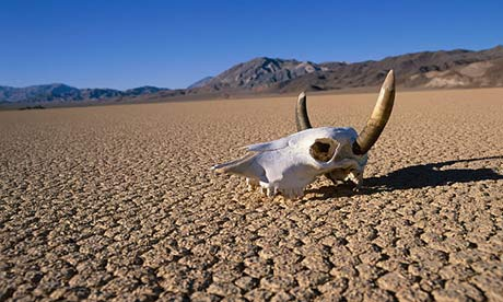 http://www.theguardian.com/world/shortcuts/2013/jul/01/death-valley-hottest-on-earth