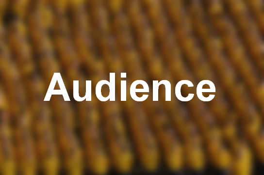 target-audience