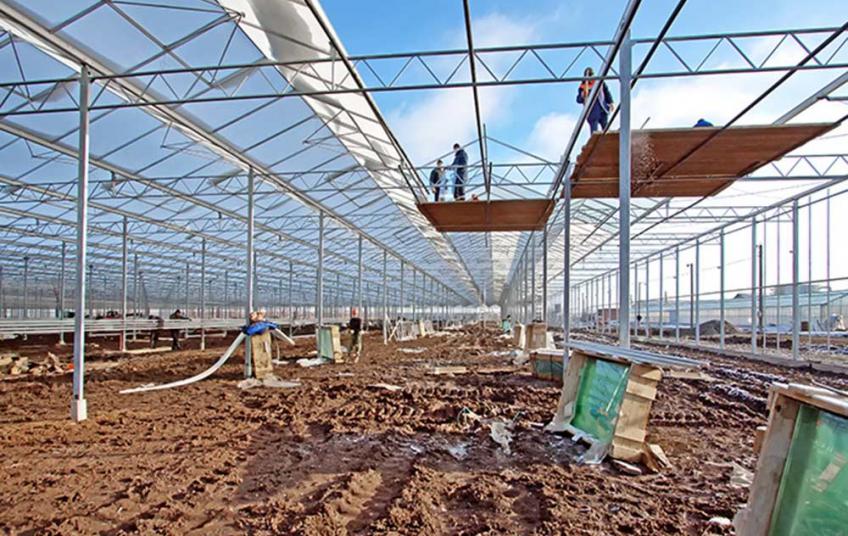 Строительство теплиц — один из распространенных видов заработка для иностранных рабочих в России.