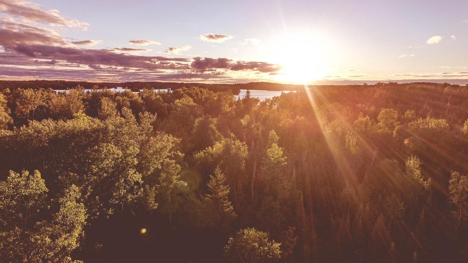 E:\sunlight.jpg