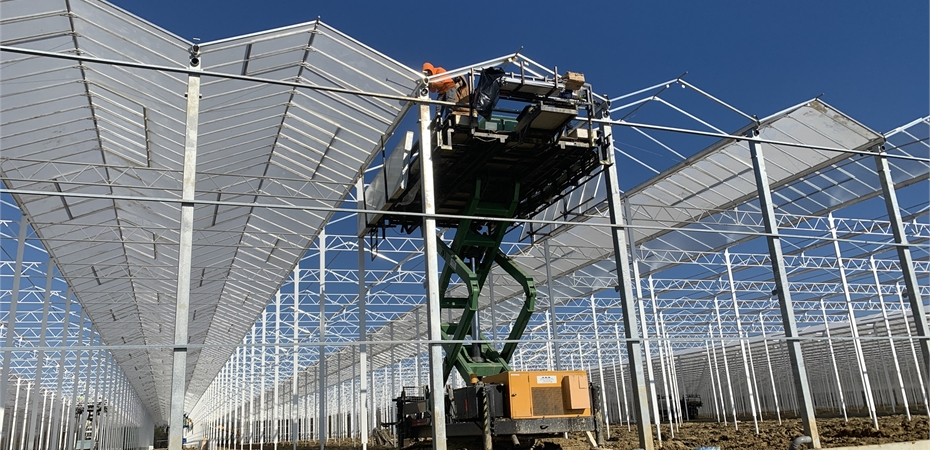 AppHarvest collaborates with Netherlands-based DALSEM to build its 60-hecatre greenhouse in Morehead