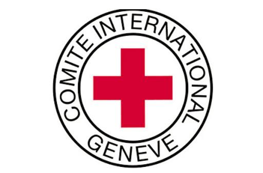 Красный Крест: в каждом российском КАМАЗе из конвоя останется один водитель    АРГУМЕНТ