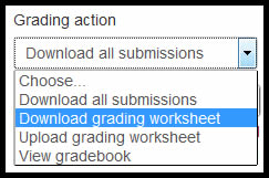 grader worksheet.jpg
