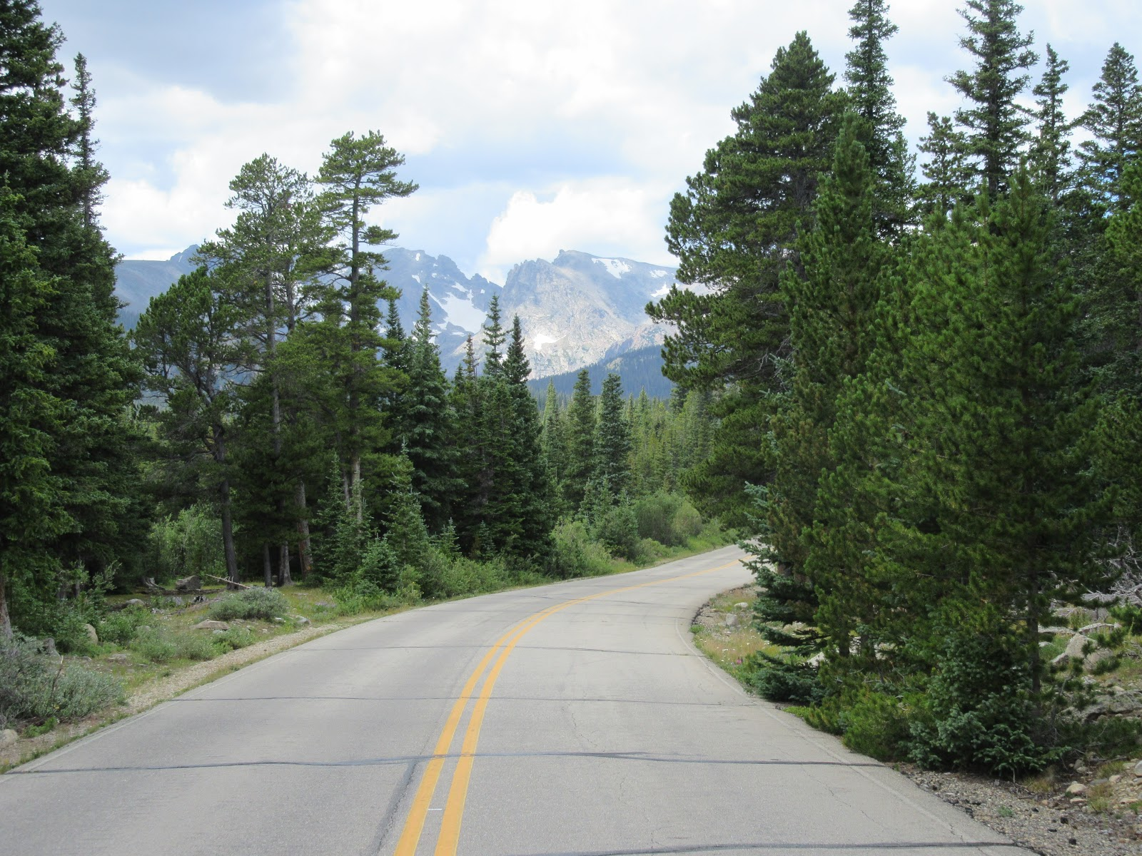 Climbing Left Hand Canyon by bike - road bordered by trees with mountain in the background