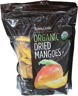 Can cats eat dried mango?