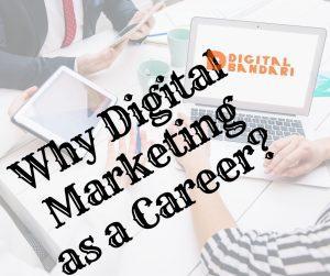 Digital Marketing, Career