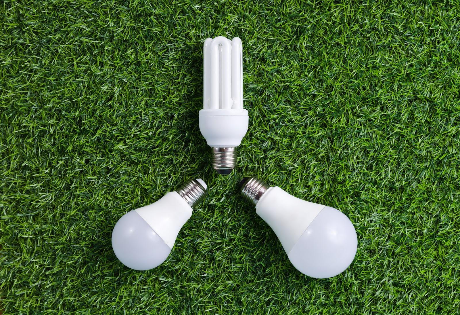 電球 の 選び方