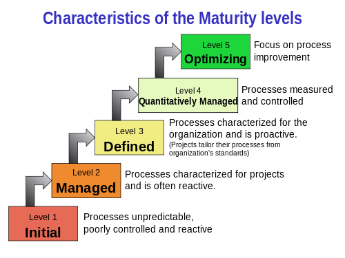 Characteristic Of The Maturity Levels Graphics