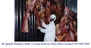 Bớt Ăn Thịt Là Tốt Nhứt - Sức Khỏe - Việt Báo Văn Học Nghệ Thuật