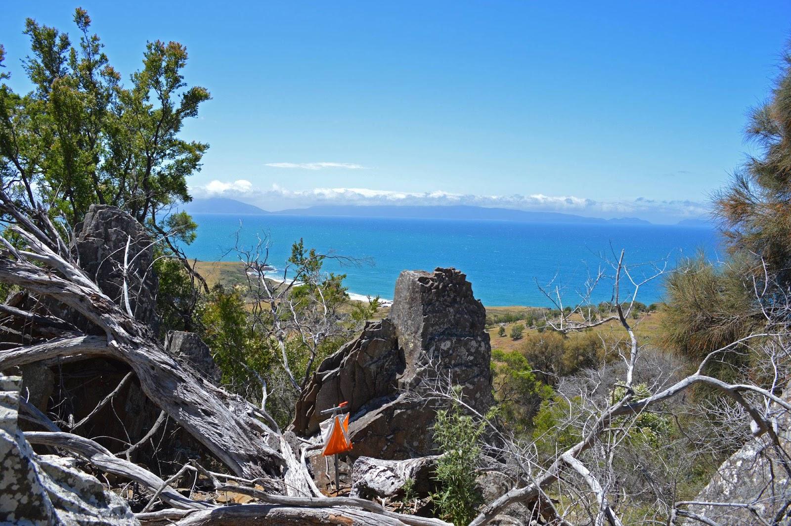Tasmania view.jpg