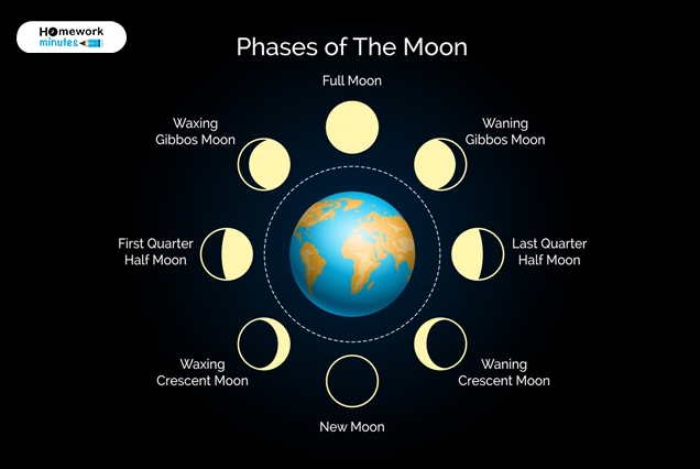 The Phases of the Moon| Lunar Phases Overview