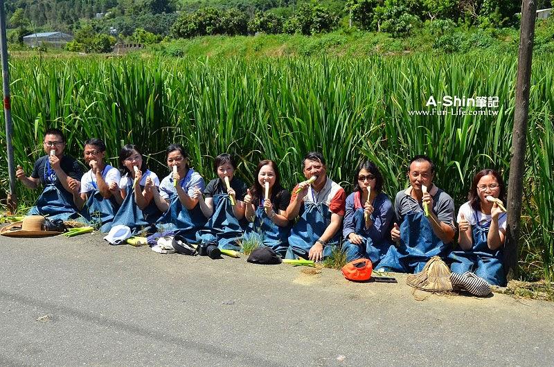 桃米休閒農業區22