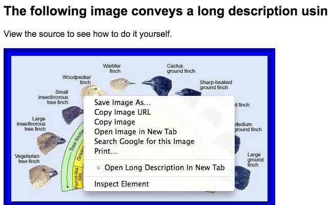 Long Descriptions in Context Menu chrome extension