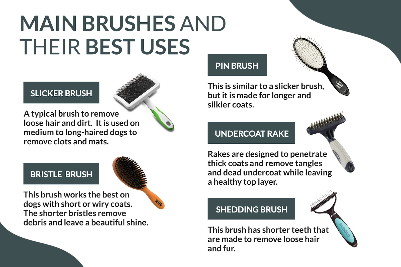 dog brushes and their uses